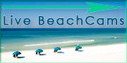 Live BeachCams