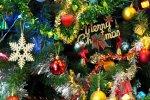 FB_IMG_1576168356176.jpg