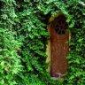 Publix greenwise sowal forum south walton florida for Publix greenwise palm beach gardens
