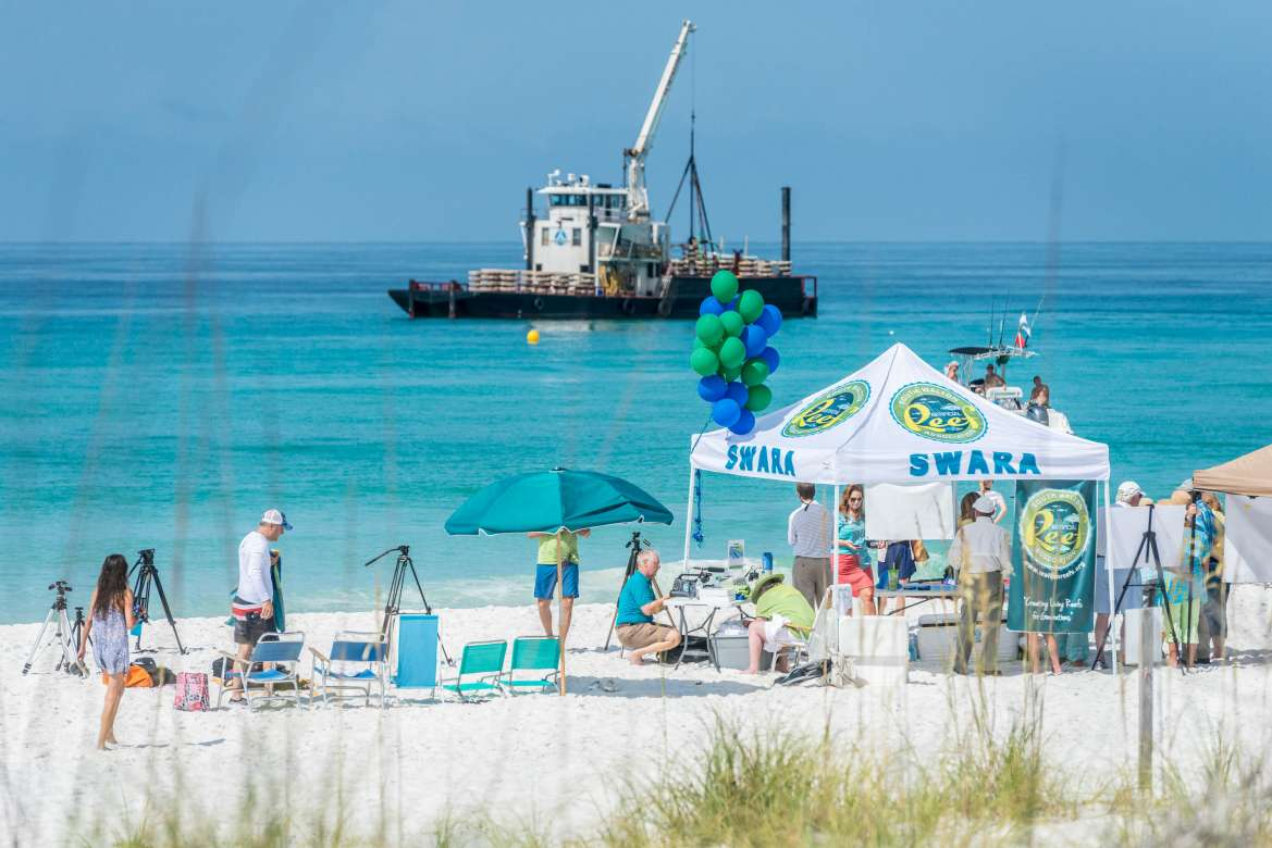 Vacation Rentals Grayton Beach Fl