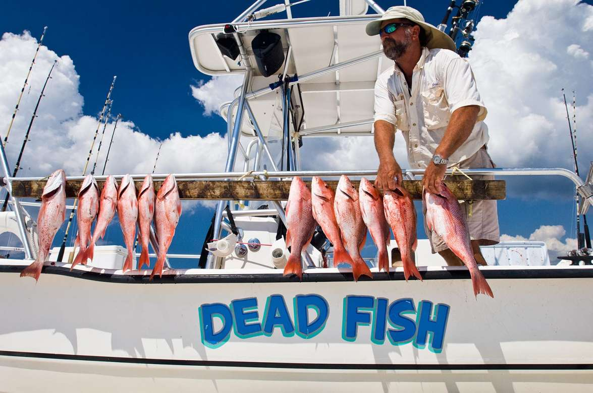 Dead fish charters for Grayton beach fishing charters